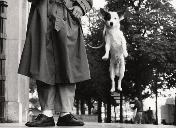 Elliott Erwitt - Parigi, Francia, 1989