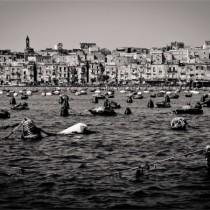 foto di Michele Amoruso