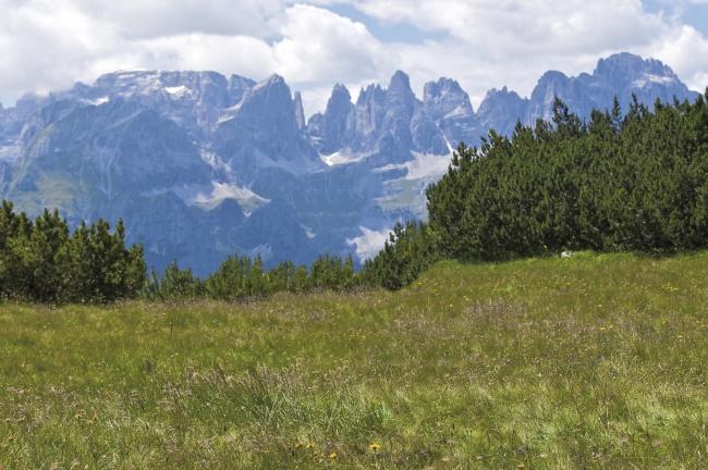 Altopiano della Paganella vista sulle Dolomiti di Brenta