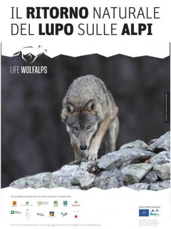 poster-wa2b-480x640