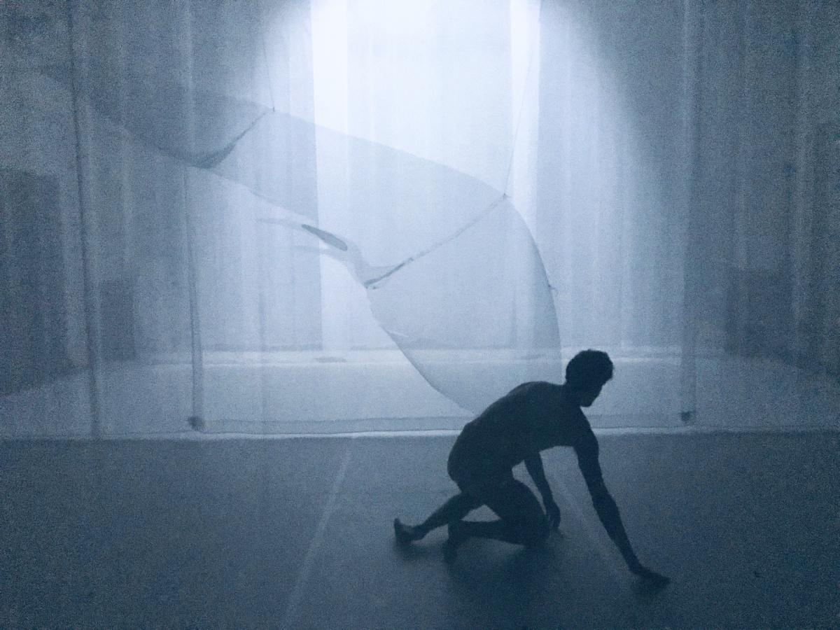 Metamorphosis foto Virgilio_Sieni