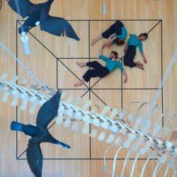 Residenze digitali: i progetti vincitori scelti da Armunia, CapoTrave Kilowatt (Amat, Anghiari Dance Hub)