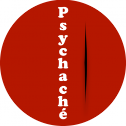 Psychachè al Liceo Rosmini di Rovereto: un supporto per gli  studenti