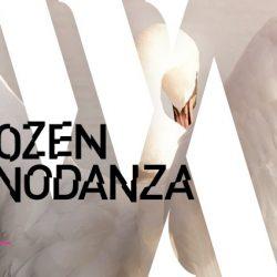 """Bolzano Danza Festival """"Swan"""": Gauthier Dance, 4 Laghi dei Cigni in versione contemporanea"""